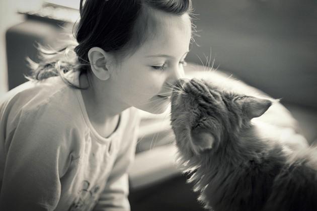 Micio-dizionario-10-parole-tratte-dal-vocabolario-gatto-umano-–-umano-gatto-II-parte4.jpg