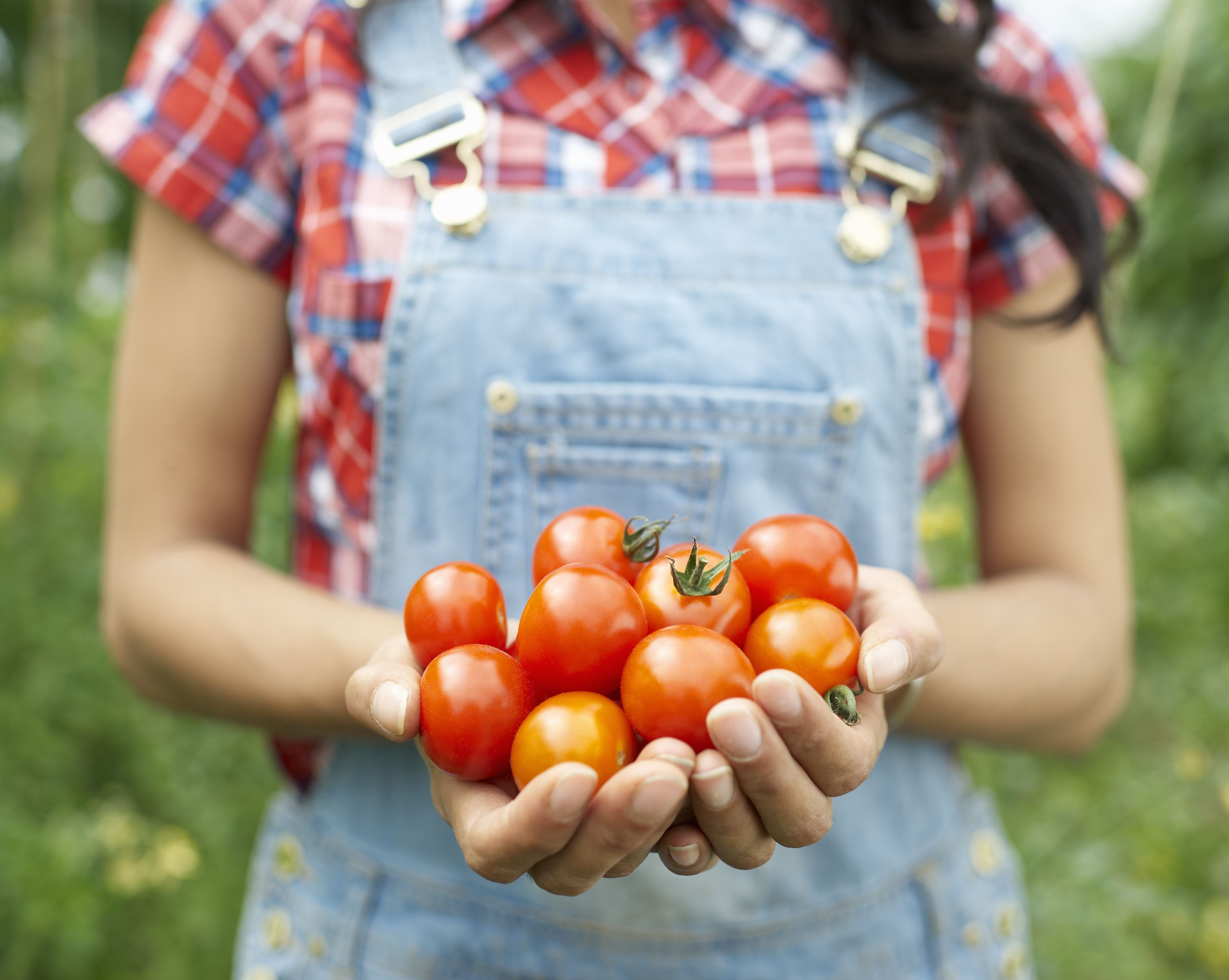 woman-holding-tomatoes-in-hands-177220132-588555883df78c2ccdbc1e71 (1).jpg