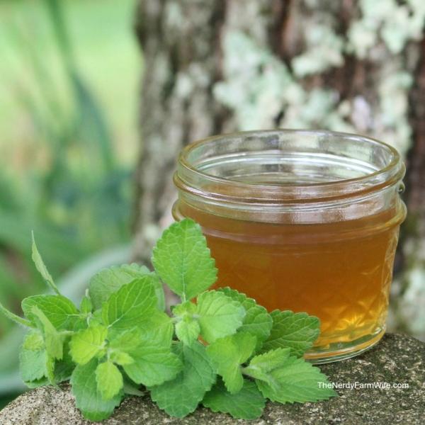 Lemon-Balm-Honey-Syrup-1024x1024.jpg