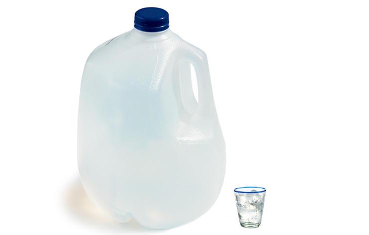 gallon_cup_mitch_mandel_updated.jpg