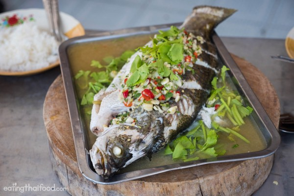 thai-steamed-fish-recipe-18-600x400.jpg