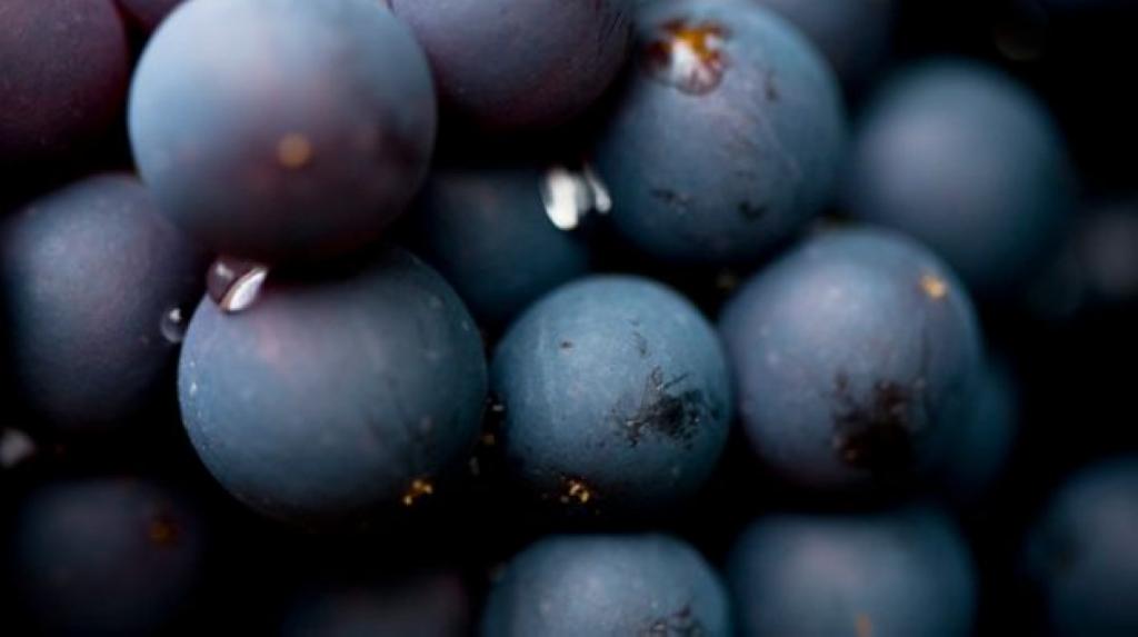 grapes_625x350_81443376495.jpg