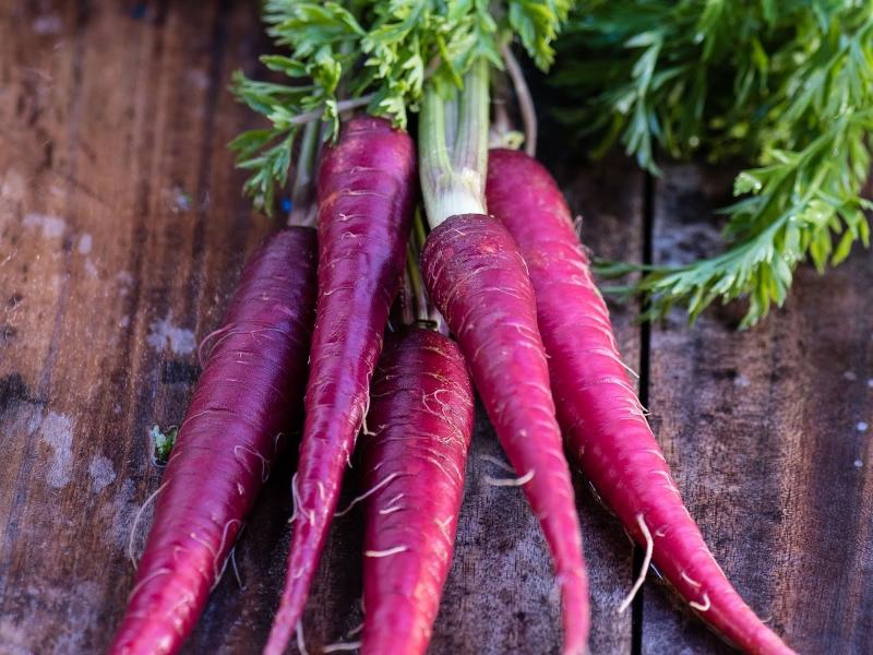 purple carrot.jpg