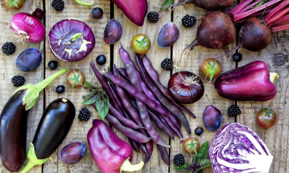 cover-image-purple.jpg