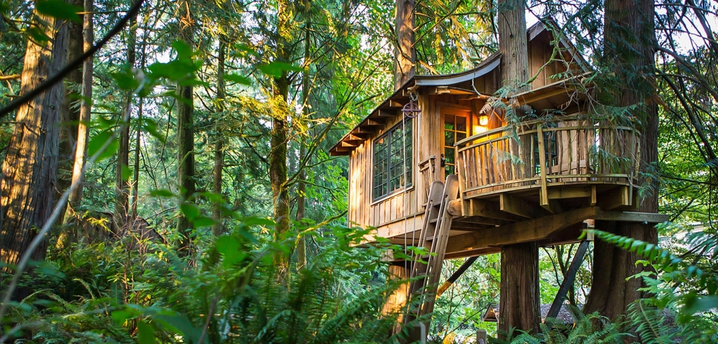 treehouse-point-banner.jpg