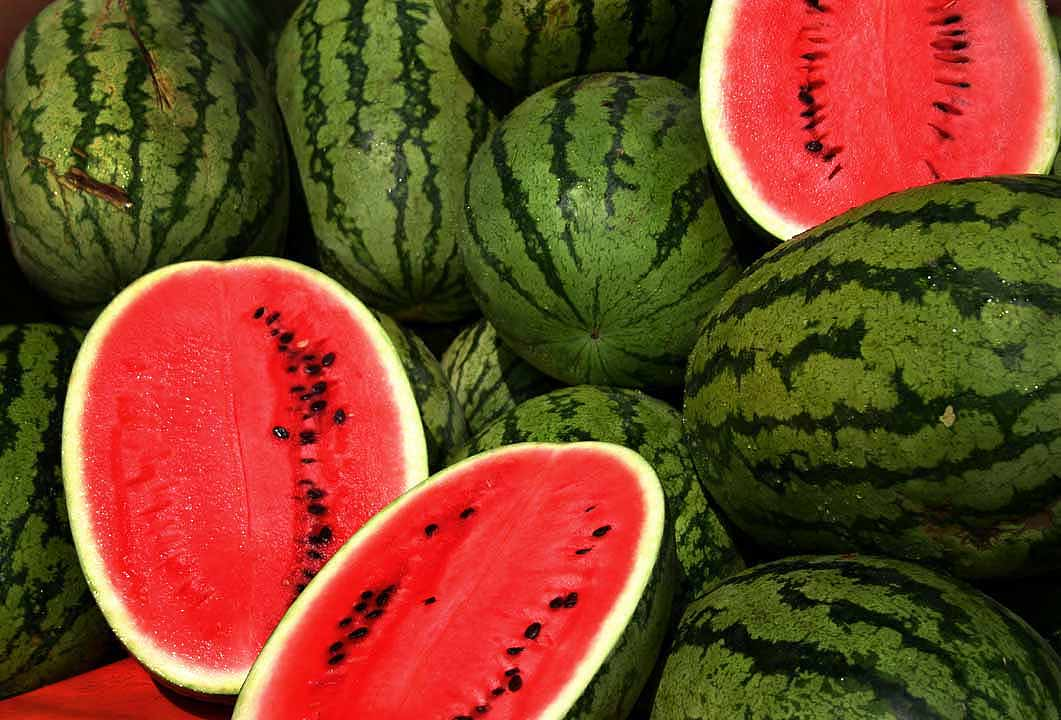 watermelon-theme.jpg