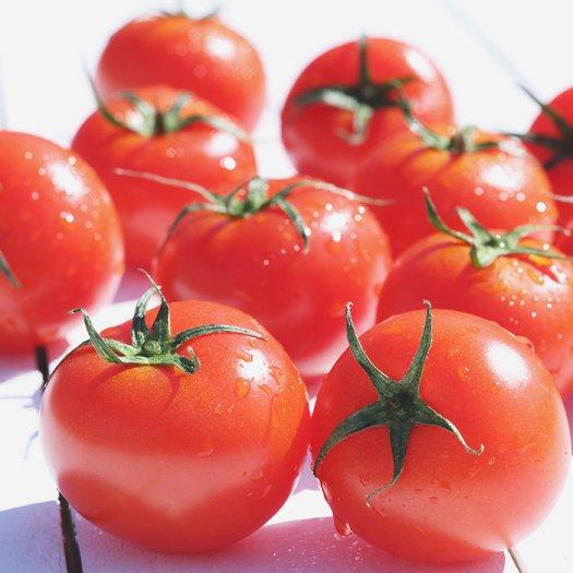 tomatoes_2.jpgtomatoes_2_0.jpg