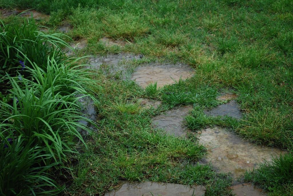 excessive-rain.jpg