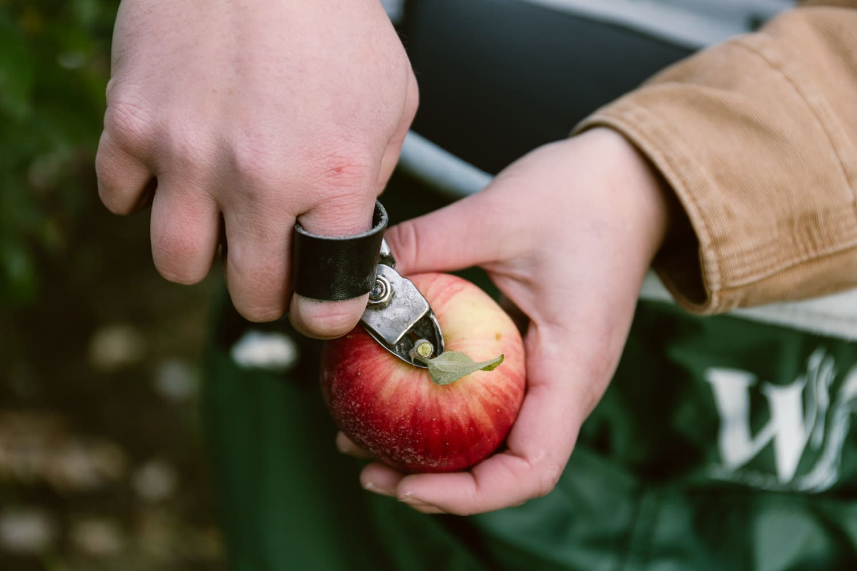 How-To-Make-Apple-Roses-8646.jpg