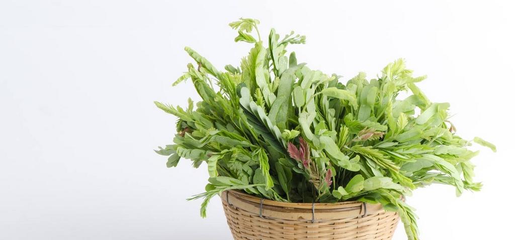 5261_13-Amazing-Health-Benefits-Of-Tamarind-Leaves.jpg
