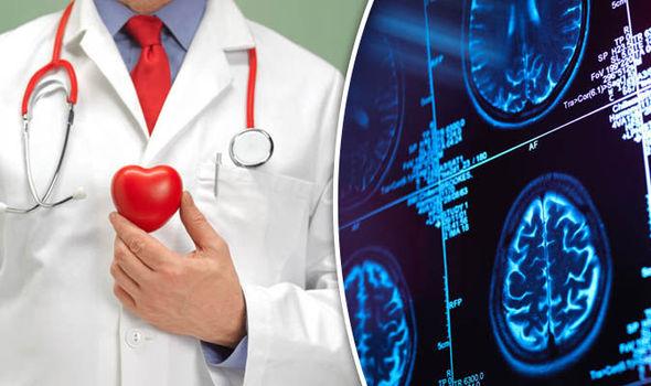 heart-brain-830628.jpg