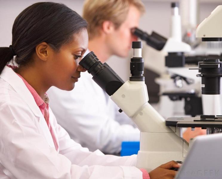 woman-and-man-at-microscopes.jpg