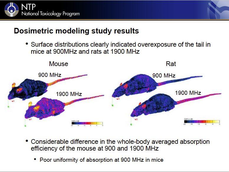 dosimetric-modeling-study-results.jpg