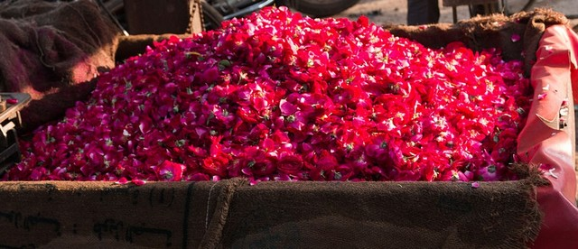 rose-petals-bundi-market.jpg