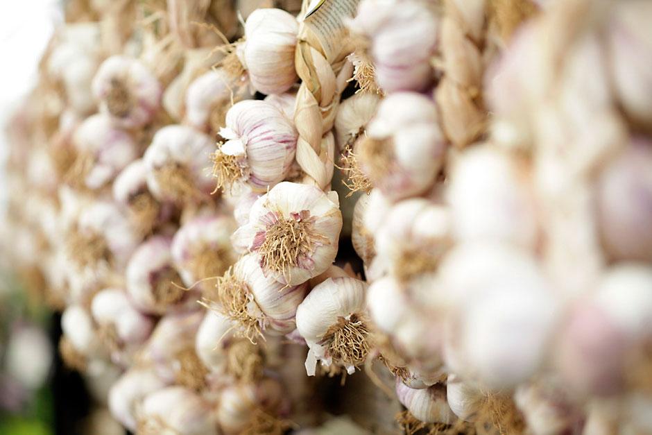 garlic_RHS_MAR0002748_940x627.jpg