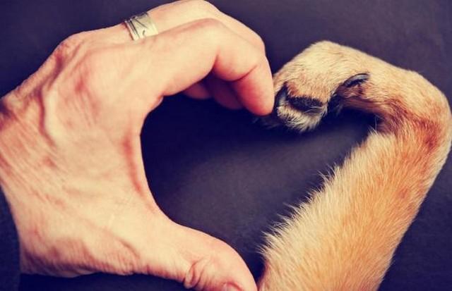 shutterstock-loving-kindness.jpg